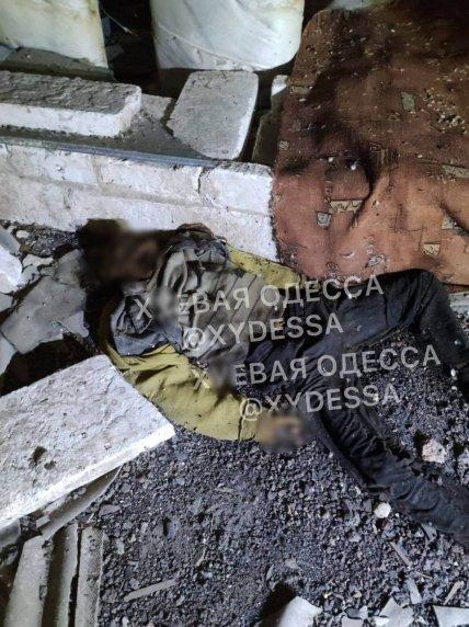Скелетизированные останки в Одессе