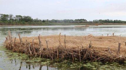 Экологи построили искусственный остров в Одесской области