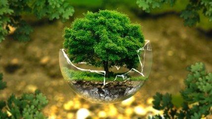 Хорошие экологические новости ушедшего года, которые вы могли пропустить