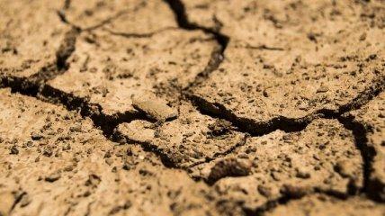 Климатические перемены: рекордная засуха угрожает урожаю во Франции