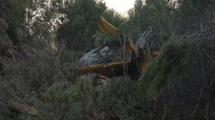 В Греции над пылающими лесами разбился пожарный самолет (фото)