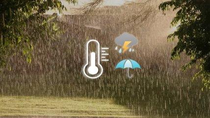В Україну йдуть дощі, але літо поки не думає відступати: прогноз погоди на 4 серпня