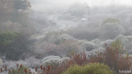 Мороз уже в октябре: климатолог дал шокирующий прогноз