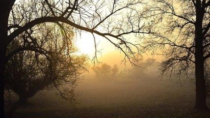 Какой завтра праздник: обычаи и традиции на 28 ноября