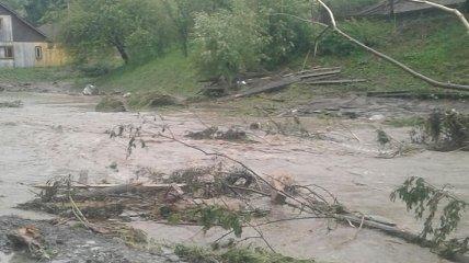 Затопленные дома и размытые дороги: в Закарпатской области прошли сильные ливни (фото)