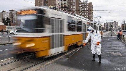 В Венгрии ожидают пик эпидемии коронавируса