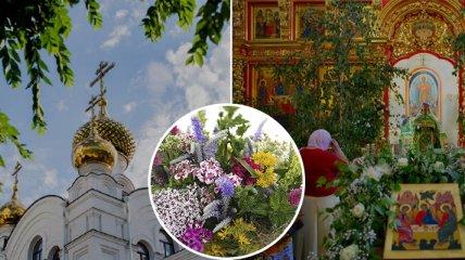 Троица 2021: какие травы святят в церкви и как их потом используют (инфографика)