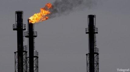 Румыния накажет нефтяников, которые загрязнили Дунай