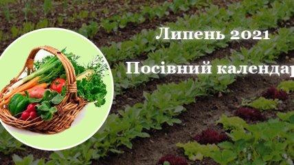 Сприятливі дні для городніх і садових робіт: що і коли можна садити в липні 2021