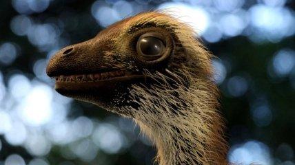 Ученые показали, как выглядели детеныши тираннозавра рекса (Фото)