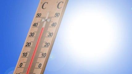 Аномальная жара в Индии забрала жизни уже 70 человек