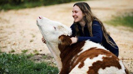 """""""Freedom Farm"""": ферма для животных с ограниченными возможностями"""