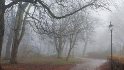 Утром стоит ждать тумана