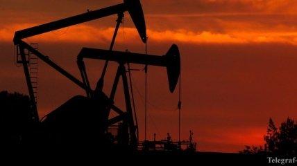 Цены на нефть поднимаются из-за сокращении ее запасов в США