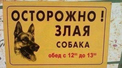 Убойные таблички, предостерегающие от злых собак