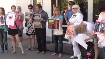 Владельцы домашних животных пикетировали МВД