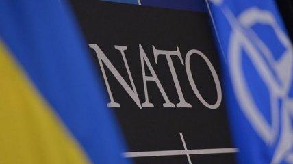 Россию продолжают бояться: названа причина, почему Украину не позвали на саммит НАТО