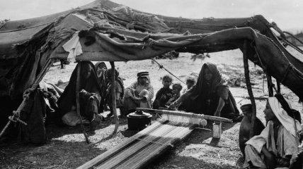 Культура и образ жизни бедуинов в фотографиях, снятых в конце XIX века (Фото)