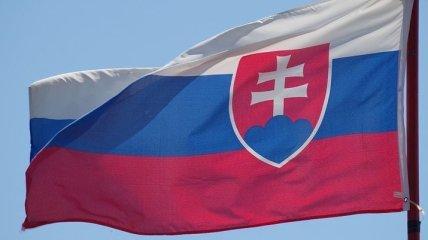 Критиковали заявление об аннексии Крыма: МИД Словакии вызвал посла РФ