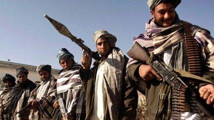 """Перемога """"Талібану"""" в Афганістані: журналіст розповів, які уроки варто витягти Україну"""