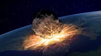 Падение астероида на Землю убило не только динозавров, но и лесных птиц