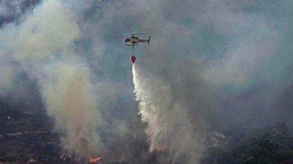 Испания в огне - в Европе горят леса и поля (фото, видео)