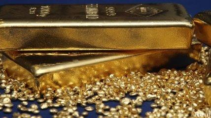 Золото продолжает дорожать: цена выросла до исторического максимума