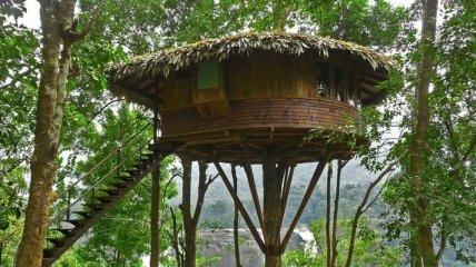 Домики на дереве, о которых каждый мечтал в детстве (Фото)