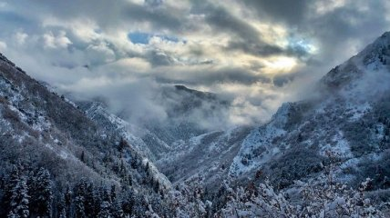 Красота природы на снимках (Фото)