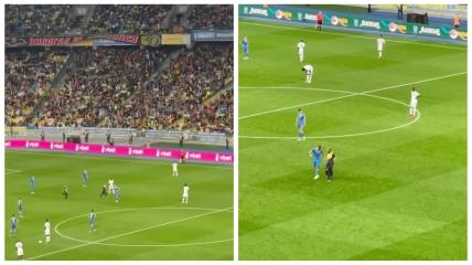 Во время игры Украина - Франция на поле выбежал ребенок