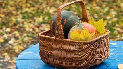 Лунный календарь садовода-огородника на октябрь 2021