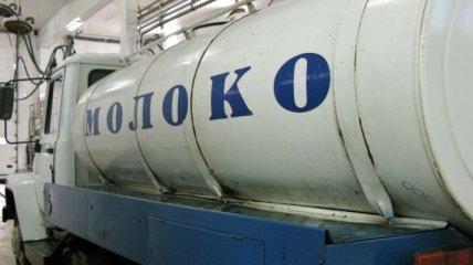Украина планирует начать экспорт мяса и молочных продуктов в ЕС