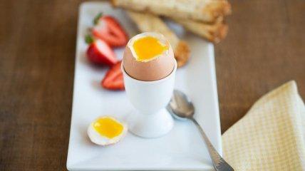 Диетологи называют яйцо эталоном белка