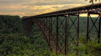 Мужчина сумел присвоить мост
