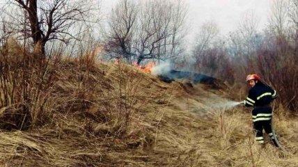 На Київщині горять 20 гектарів очерету, згоріли два будинки