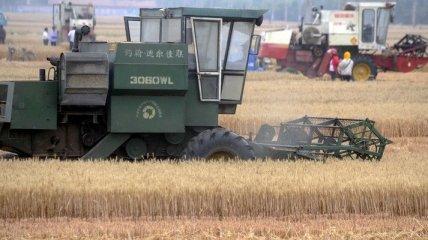 Аграрная биржа намерена ввести фьючерсный контракт в гривне