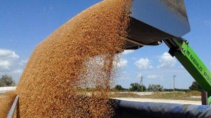 Украина уже экспортировала почти 10 млн тонн зерна