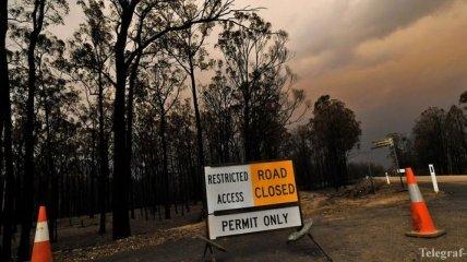 В Австралии для борьбы с пожарами призвали военных