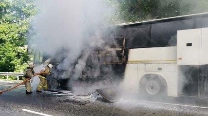 В России столкнулись два пассажирских автобуса: 15 детей оказались в больнице (фото, видео)