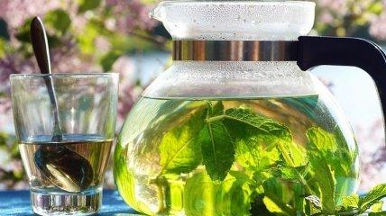 Зеленый чай снижает вред жирной и тяжелой пищи