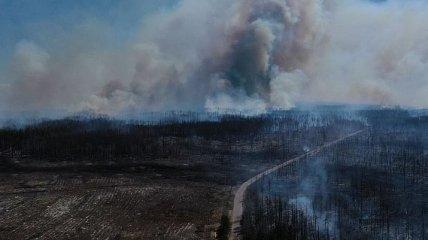 В зоне отчуждения ликвидировали еще один очаг огня
