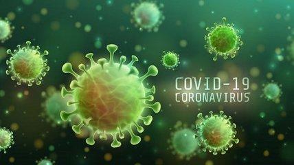Китай изменил версию происхождения коронавируса