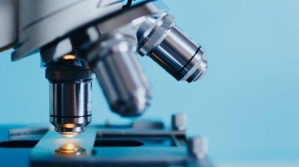 Новый анализ крови позволит на ранних стадиях диагностировать болезнь Альцгеймера