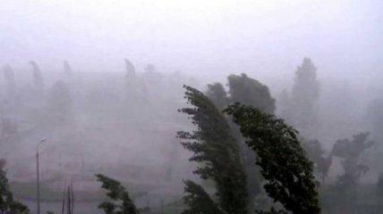 Наслідки буревію Гвідо: як негода зашкодила українцям