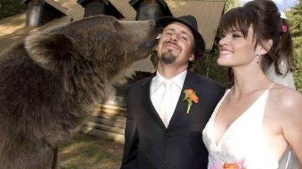 Незабываемый день: смешные свадебные приколы