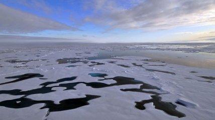 """""""Голая"""" Арктика: Северный Ледовитый океан может лишиться льда"""