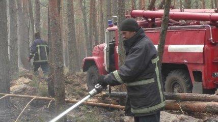 Пожары на Житомирщине: Кабмин выделил 25 млн на ликвидацию