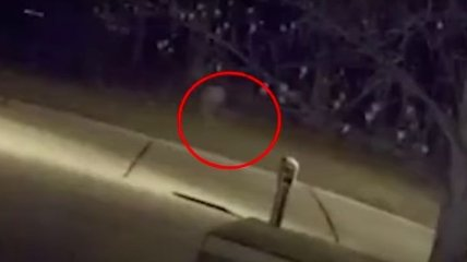 """""""Ребенок-призрак"""" устроил переполох в Огайо: видео удивило даже копов"""
