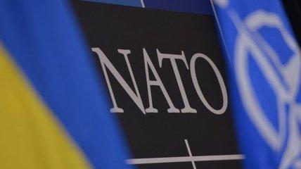 НАТО: Украина на сегодня имеет беспрецедентный уровень поддержки в мире