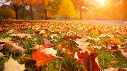 Погода в Украине на выходные, 2-3 октября